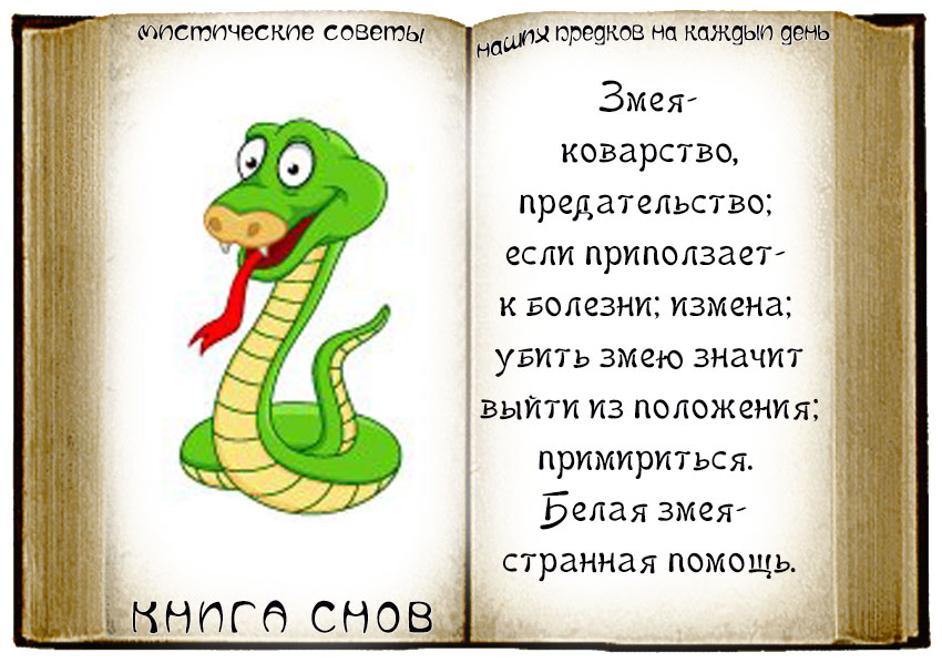 Во сне чуть не укусила змея